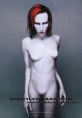 Marilyn Manson Mechanical Animals Textile Poster Fabric Flag