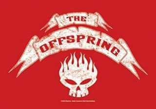 The Offspring Textile Poster Fabric Flag Skull