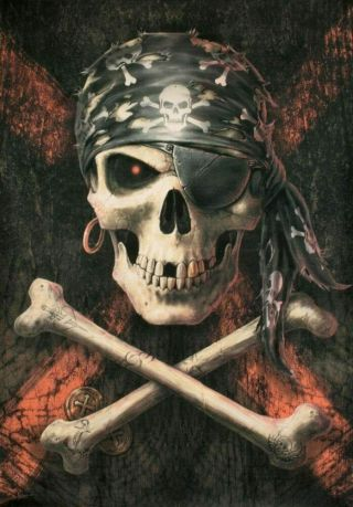 Anne Stokes Textile Poster Fabric Flag Pirate Skull