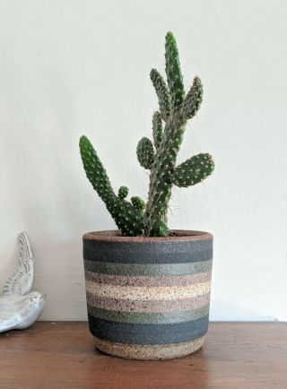 Kat And Roger Small Striped Plant Pot
