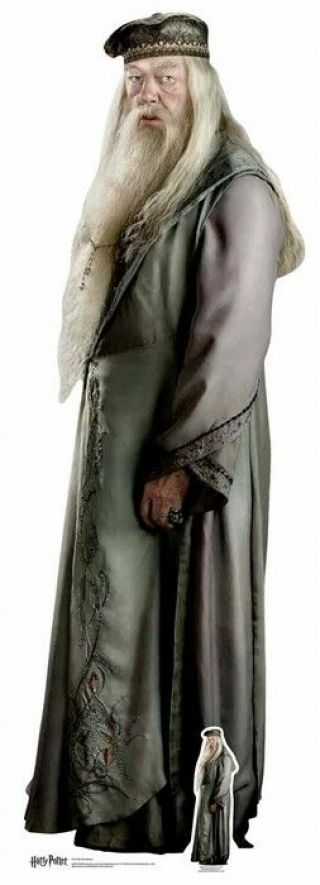 Albus Dumbledore Harry Potter Lifesize Cardboard Cutout / Standup / Standee