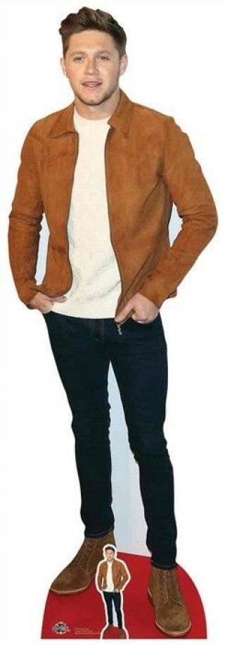 Niall Horan Suede Jacket Lifesize And Mini Cardboard Cutout / Standup / Standee