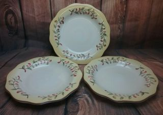 Tusan Retreat Better Homes And Gardens 3 Dinner Plates