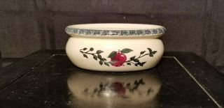 """Home And Garden Party """" Apple """" Soap Dish"""