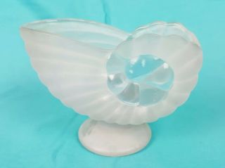 """Frosted & Clear Glass Nautilus Shell Shape Vase Decorative 4.  5 """" High Art & Craft"""