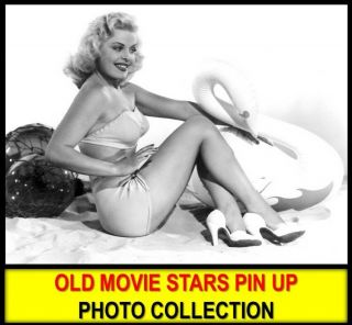 9,  800 Retro Celebrity Movie Stars Postcard Photos In Dvd Woman Pin Up Art Images