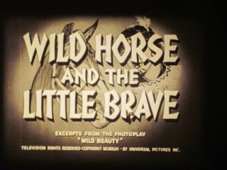 16 Mm B&w Sound 1001 1952 Castle Films Wild Horse Little Brave Buzz Henry