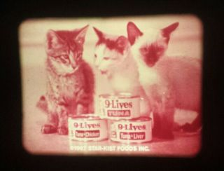 9 Lives Cat Food (1969) Commercial - 16mm