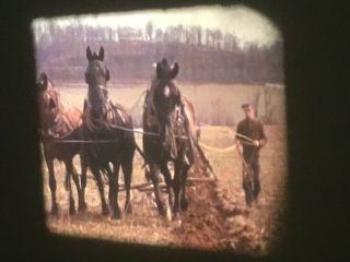 16mm Home Movies 1939 Farming Horse Plow 200'