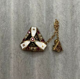 Delta Sigma Phi Fraternity Pin With Pearls And Rubies