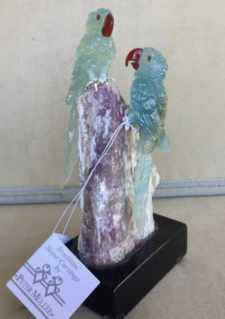 Blue Calcite Macaw Pair On Tourmaline 5  - Peter Muller