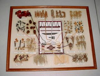 Navajo Textile Loom Dye Real Plant Weave Rug Picture Framed 21x17 Chart Teaching