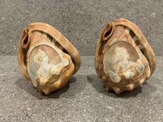 A Vintage Sea Conch Shell With Hand Carved Cameo Lady