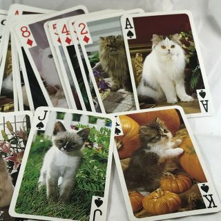Cats Cats Kittens Playing Cards 2 Deck Set Persians Tabby Calico Crafts